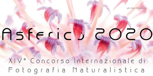 International Nature Photography Competition ASFERICO