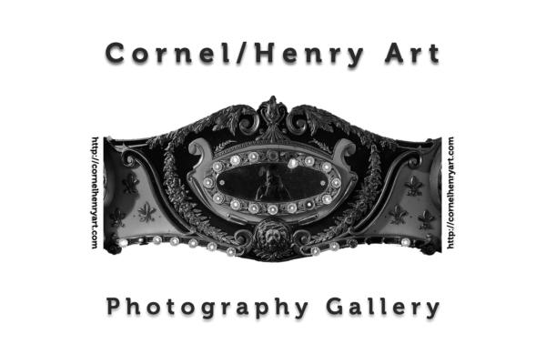 Cornel/Henry Art Artist Award
