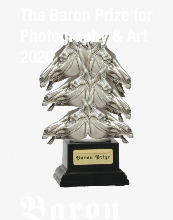 The Baron Prize for Art and Photography