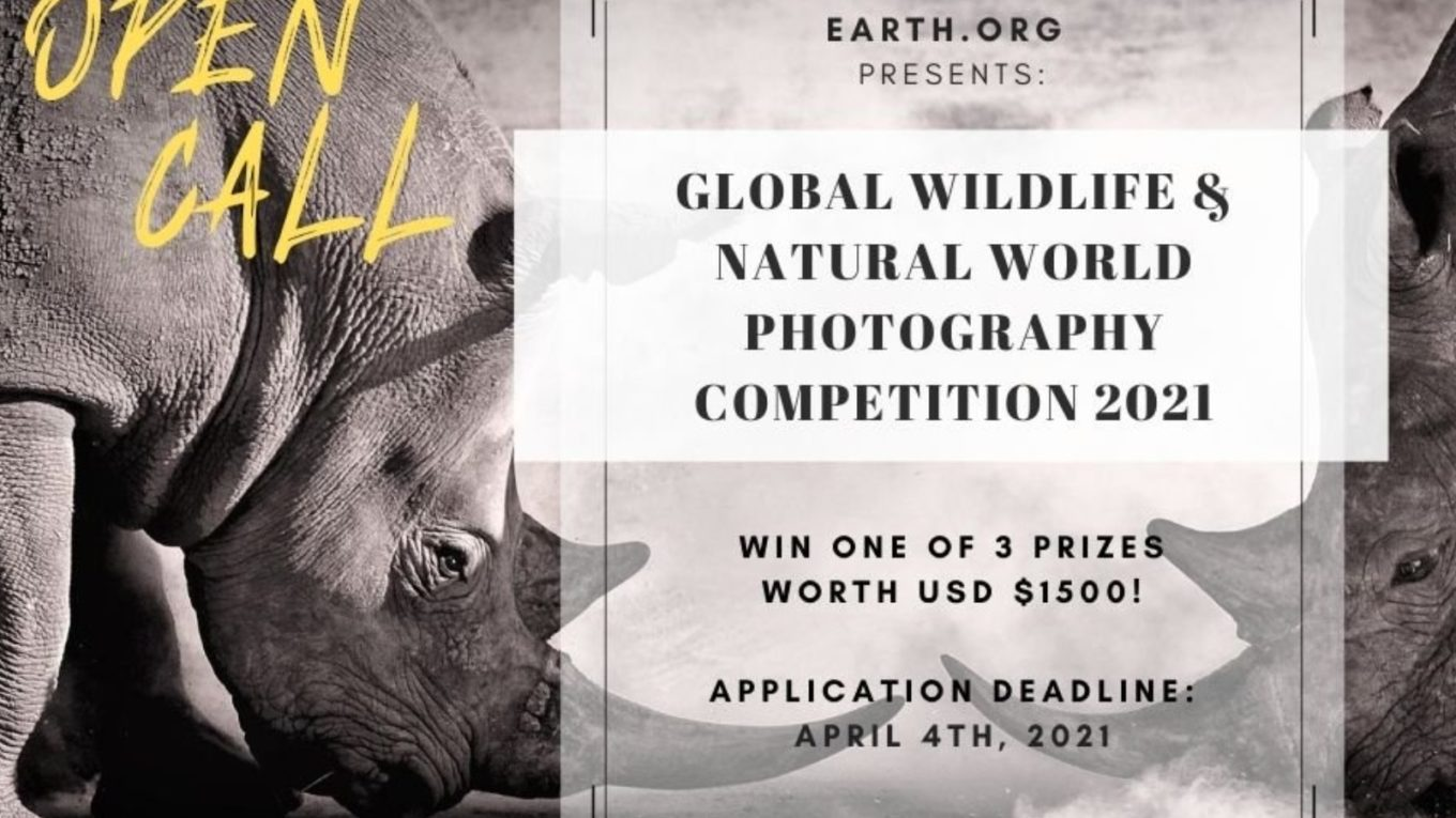 Earth.Org Global Wildlife & Natural World Photography Competition