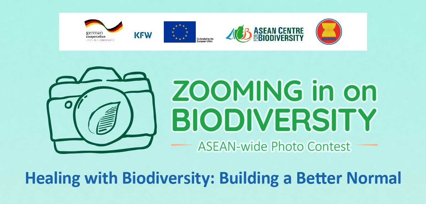 Zooming in on Biodiversity