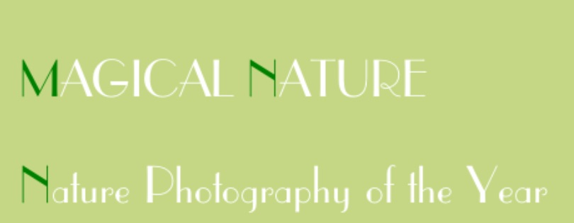 Magical Nature – Nature Photography of the Year