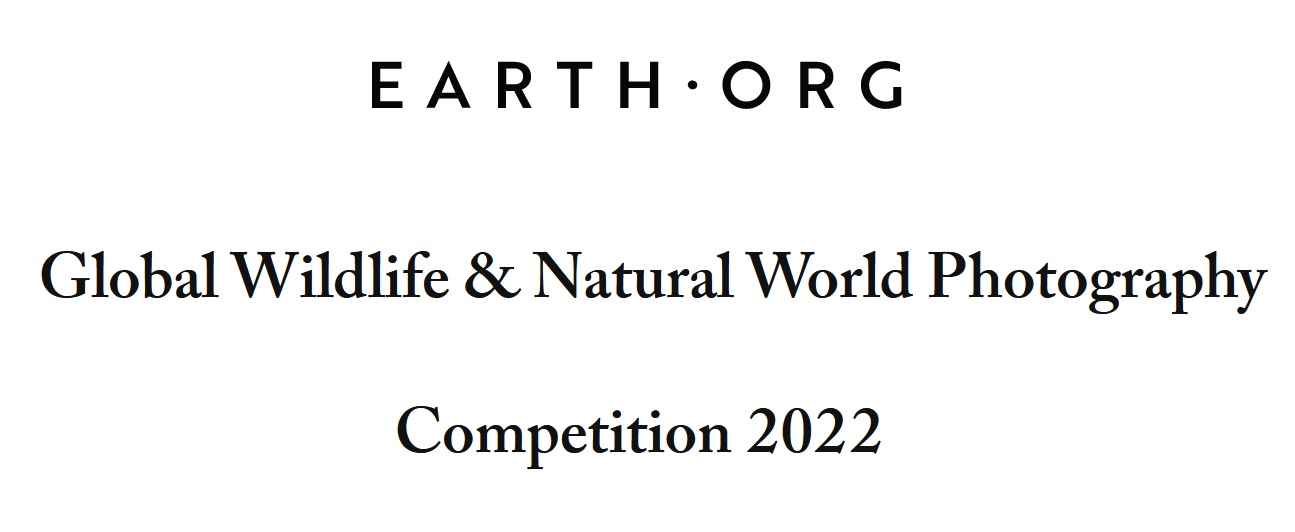 Earth.Org Photography Competition