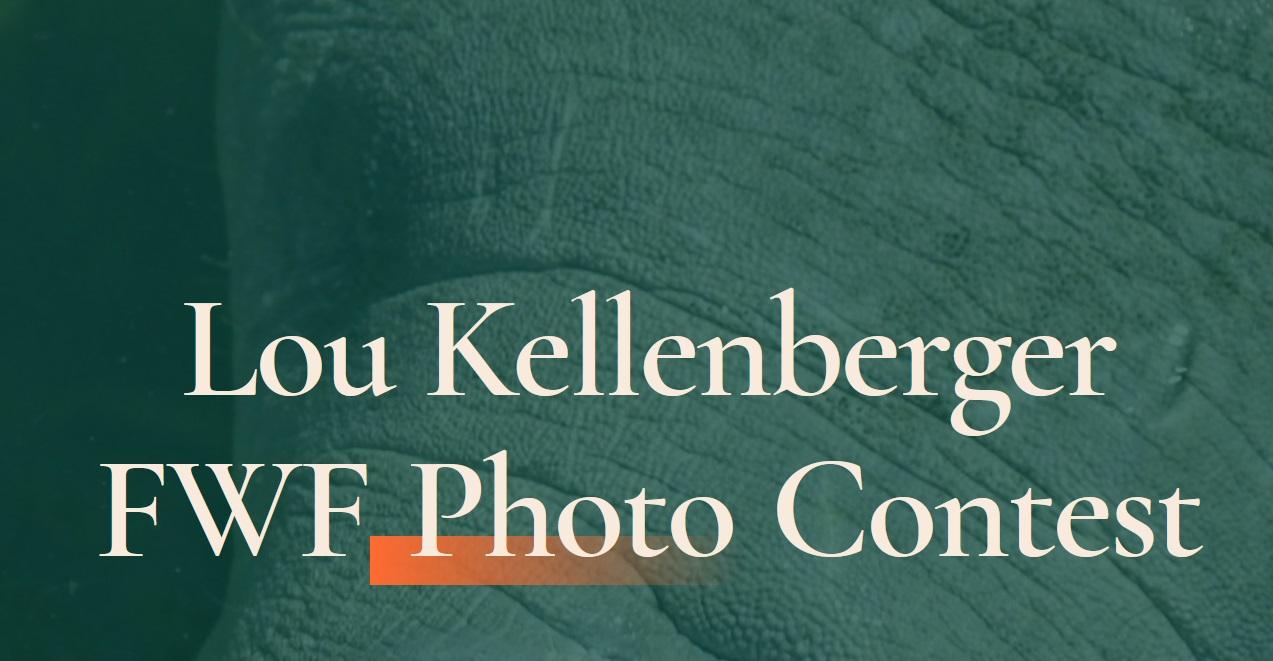 Lou Kellenberger FWF Photo Contest