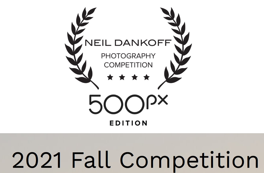 Neil Dankoff Photo Competition 500px Edition